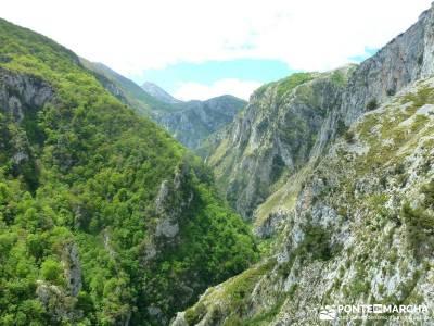 Picos de Europa-Naranjo Bulnes(Urriellu);Puente San Isidro; caminito del rey monasterio de piedra